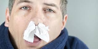 hidung1